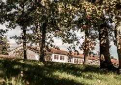 Stancija Meneghetti